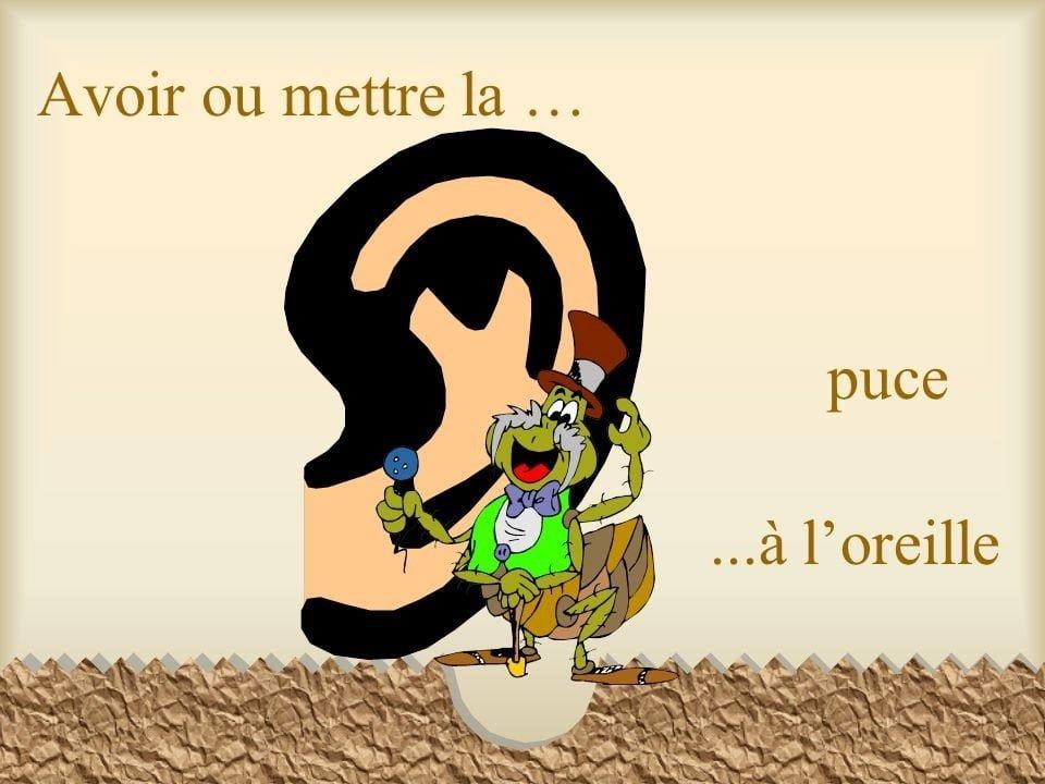Frase hecha en francés sin una traducción literal