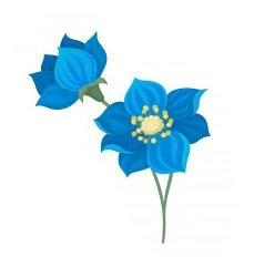 Flor de color azul. En francés: fleur bleue.